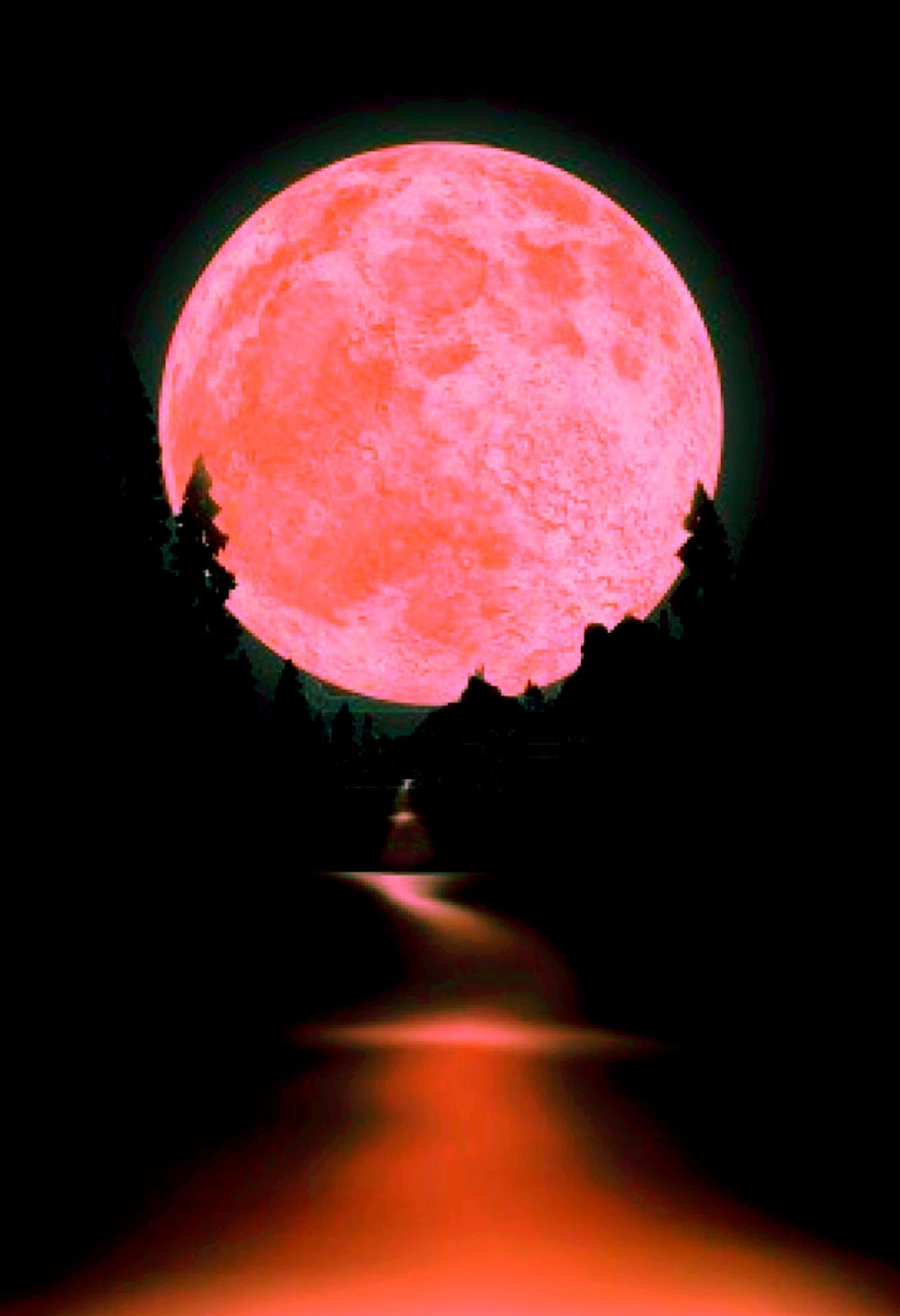 The Pink Light Of A Blood Moon Is Reflected Into Dark Lake