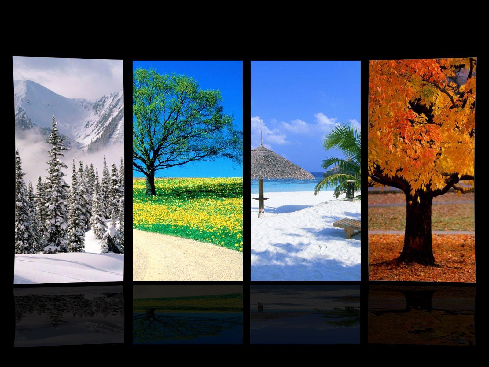 Four Seasons Wallpaper Four Seasons Seasons Wallpaper
