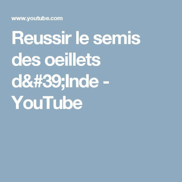 Reussir le semis des oeillets d 39 inde youtube plantes - Semis oeillet d inde ...