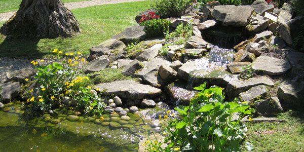 Bassin et Fontaine  Jardin & Piscine  Nouveaux marchands  Vente de petit