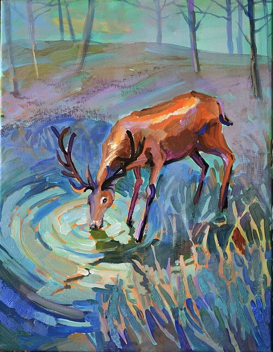 Deer Drinking Drawing - Bing