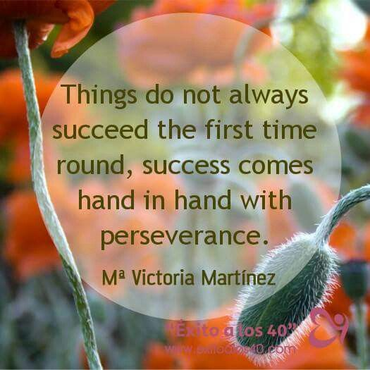 Perseverance | Perseverance, Success meaning, Emotions