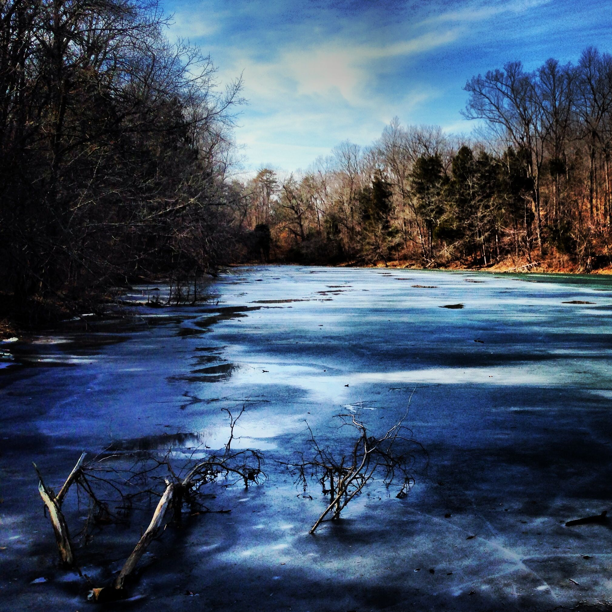 Frozen lake at Abbey of Gethsemani Trappist, KY