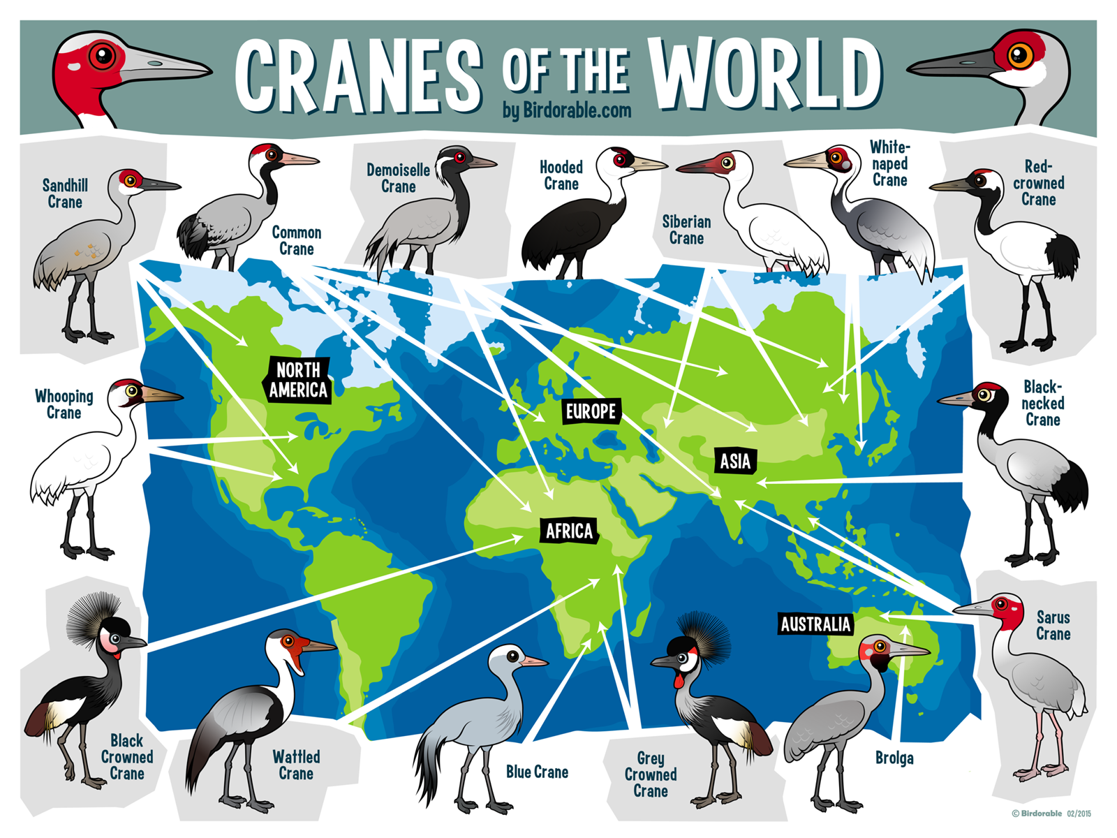Download this free map with all cranes of the world with cute download this free map with all cranes of the world with cute cartoon birds by birdorable gumiabroncs Choice Image