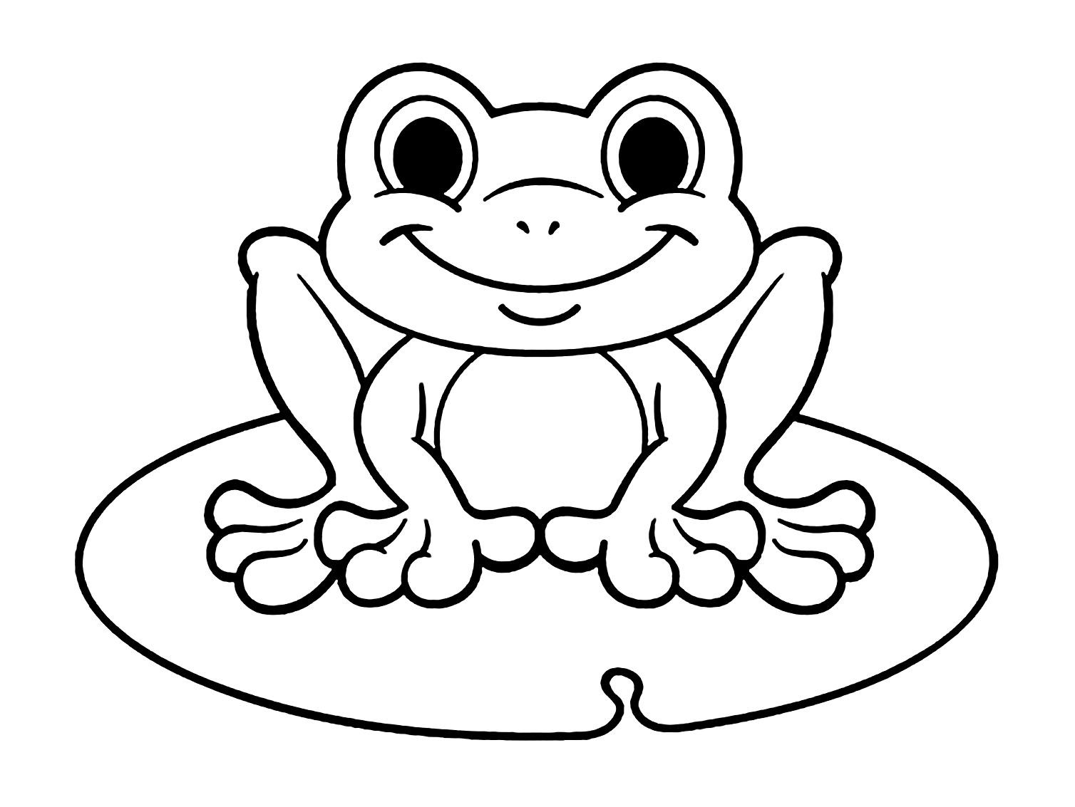 Coloring Of The Frog