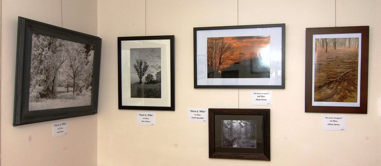 Pennypack Photography guild exhibit at Orchard Artworks