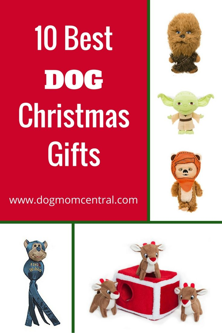 Our list of the 10 best dog Christmas gifts includes a variety of ...