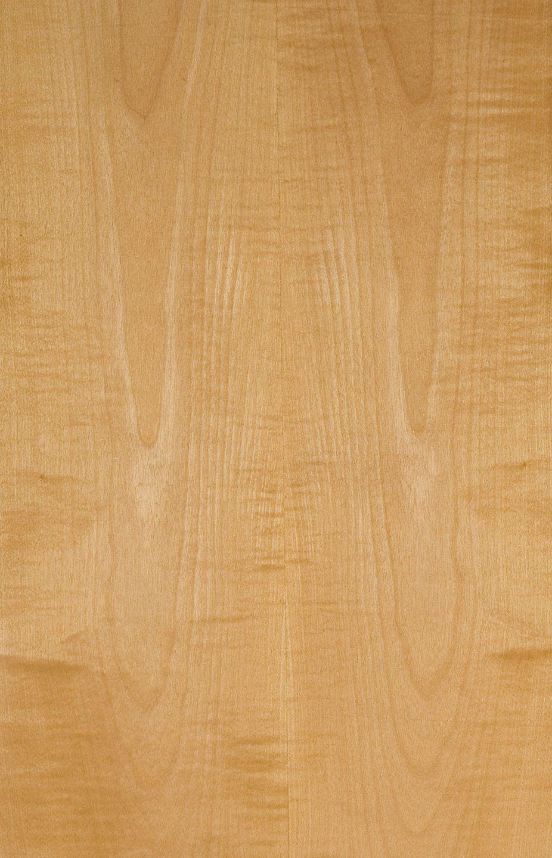 Steamed Sycamore Flowery In 2020 Veneers Wood Veneer Wood Texture