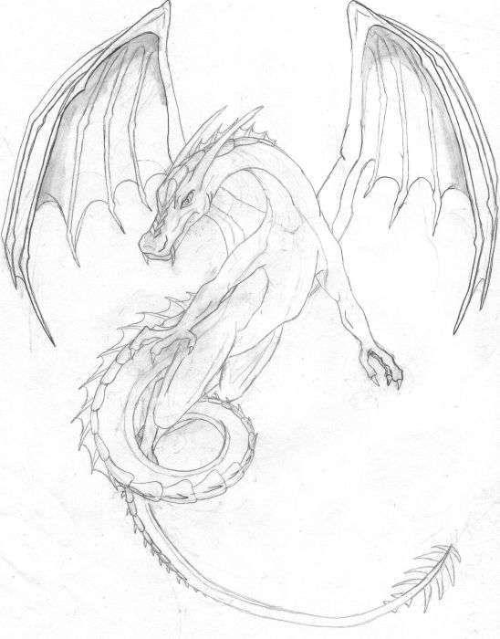 Google Image Result For Http Images Elfwood Com Art F I Fightereagle Flying Dragon Final Jpg Dragon Drawing Dragon Pictures Dragon Sketch