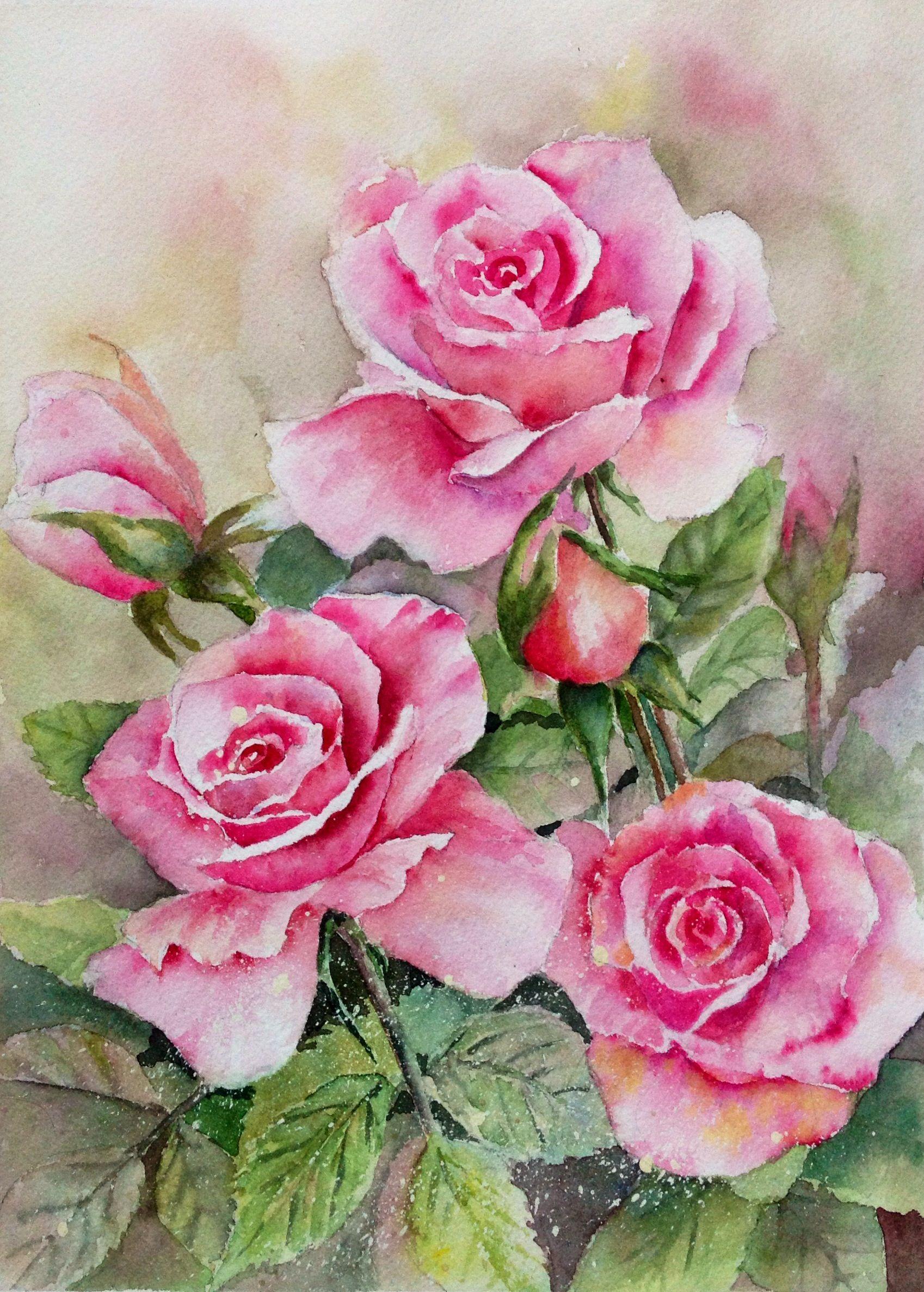 Rosas rosas--- Original watercolor by Mahjabin GG