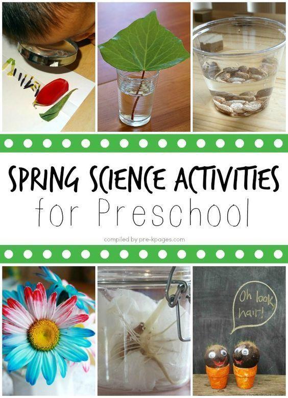 Spring Science Activities for Preschoolers