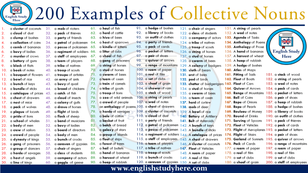 200 Examples of Collective Nouns Collective nouns, Nouns