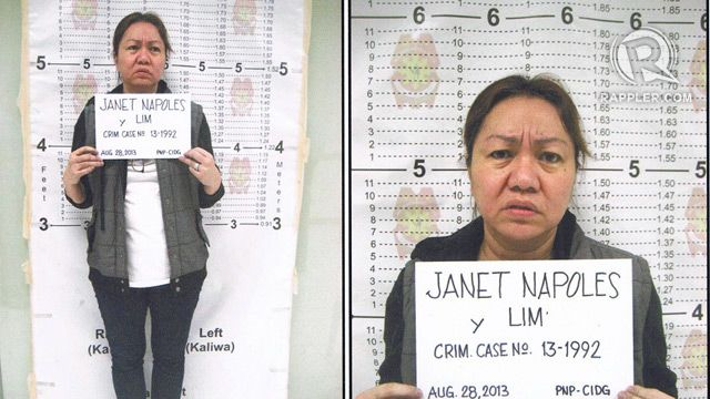 a brief on the pork barrel The wheels of justice as usual continue to move at snail's pace in the effort to make businesswoman janet lim napoles account for her involvement in the multibillion-peso pork barrel scam.