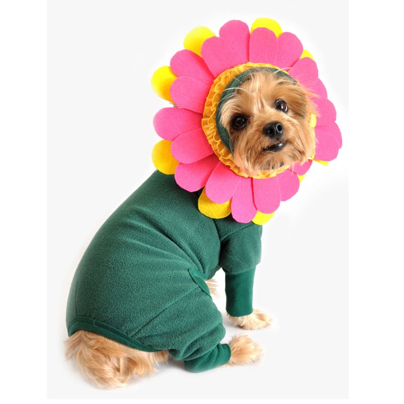 The Flower Halloween Dog Costume From Doggie Design Is Just Too