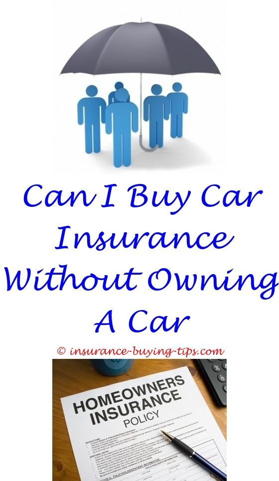 Geico Car Quote Amusing Get A Car Insurance Quote From Geico  Buy Insurance Online Design Ideas