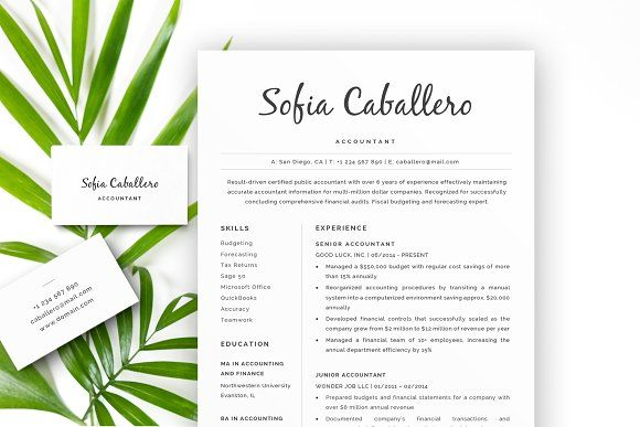Plant Accountant Sample Resume Accountant Resume  Cv Cover Lett  Resume Cv Template And .
