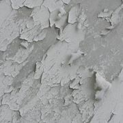 How To Fix Peeling Paint On The Bathroom Wall Ceiling In 2020 Bathroom Ceiling Paint Painting Bathroom Walls Peeling Paint