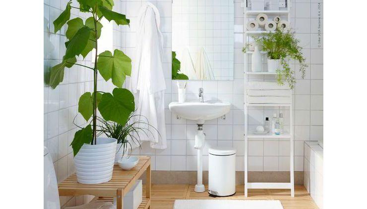 Planten in de badkamer? Waarom ook niet! - All White | Pinterest
