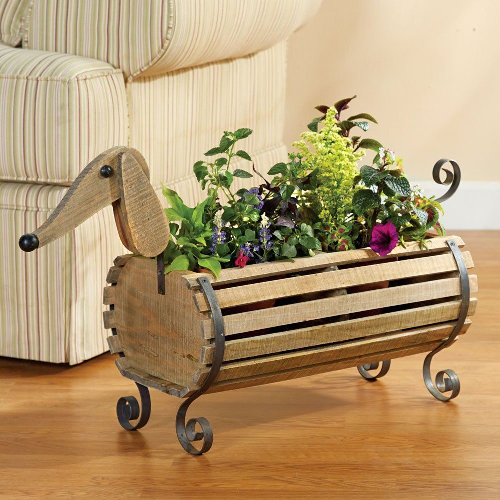 Dachshund Friendly And Curious Dachshunds Planters And Construction