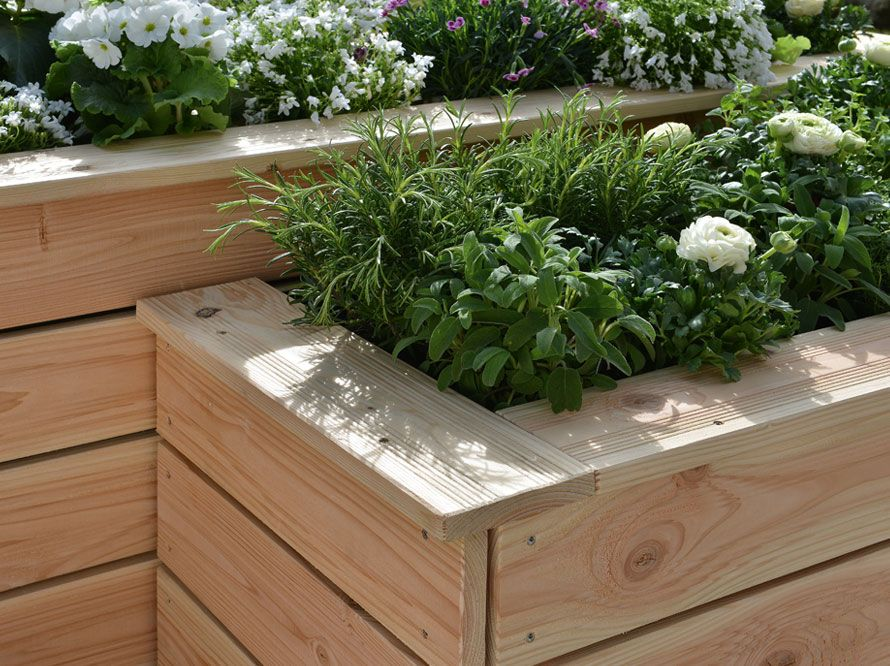 Toom Kreativwerkstatt Hochbeet Sonnenplatz In 2020 Hochbeet Garten Ideen Pflanzen