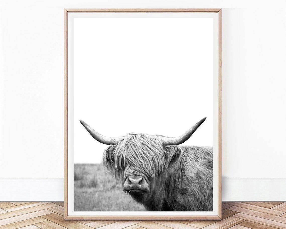 Highland Cow Cow Wall Art Decor Scotland Cow Print Farm Art Digital Digital Cow Download Farm Animal Digital Shaggy Cow Wall Art Print In 2020 Cow Wall Art Farm Art Farm