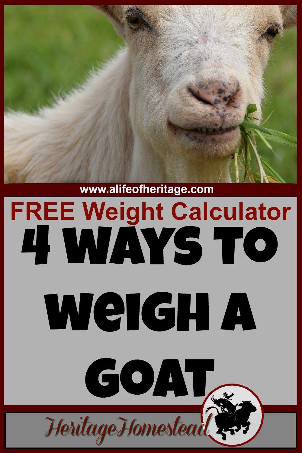 Goat Care Goat Weight Calculator How Do I Know My Goat S Weight Have You Ever Ask The Question How To Weigh My Goat Here Ar Goat Care Goats Pygmy Goat