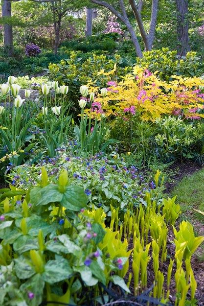 Sneak Peek Of Our Early Spring 2016 Issue Garden Design Garden Design Garden Design Magazine Urban Garden