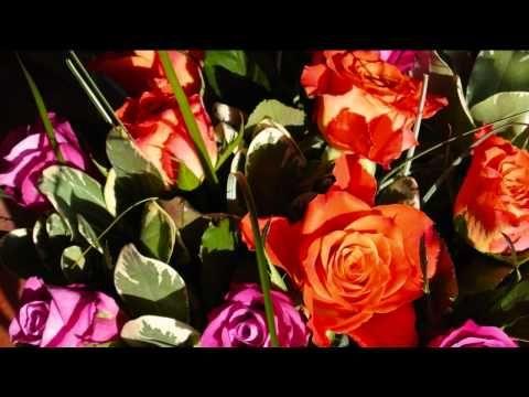 Geburtstagsgrusse Ein Blumenstrauss Zum Geburtstag Lied Text
