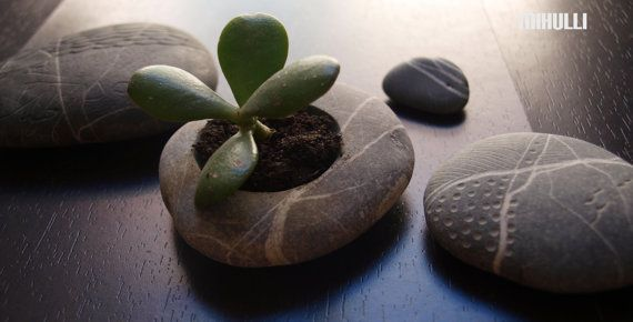 hand engraved beach stone flower planter  simple zen by Mihulli, $20.00