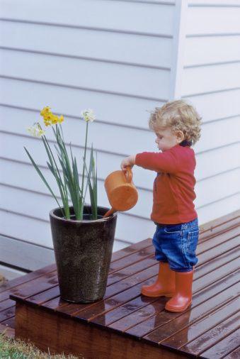 A preservação da natureza começa desde pequeno.