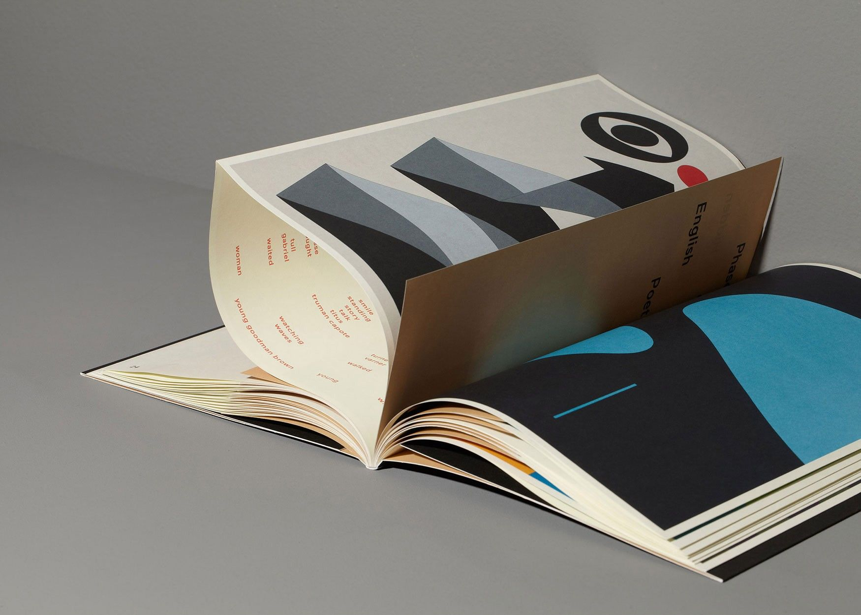 by mainstudio thomas raat is a conceptual artist  his book