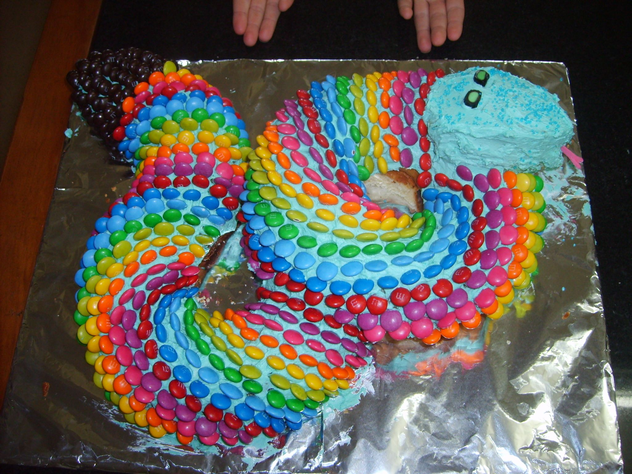 Smartie Snake Cake Note In Australia Smarties Are Different They - Snake birthday cake