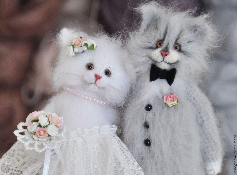 картинки с кошками о свадьбе часто везет помидорам