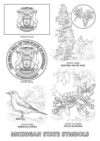 Michigan State Symbols Coloring Page From Michigan Category