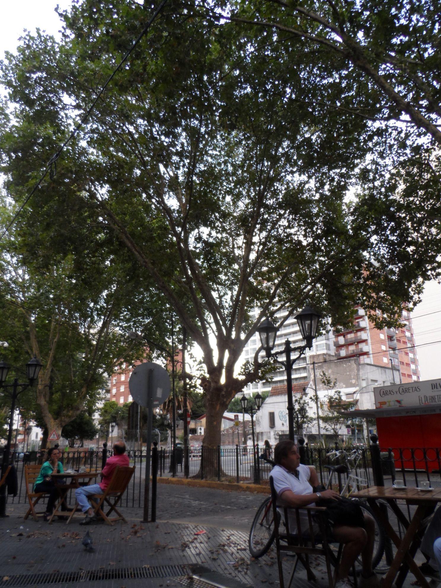 Calles de Vicente López Buenos aires, Argentina, Calle