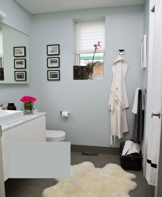 canada farrow ball skylight and guest bath. Black Bedroom Furniture Sets. Home Design Ideas