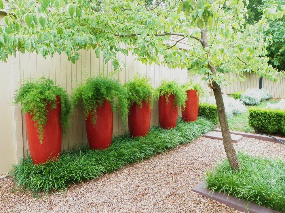 Potted plants for front entrance landscape contemporary ...