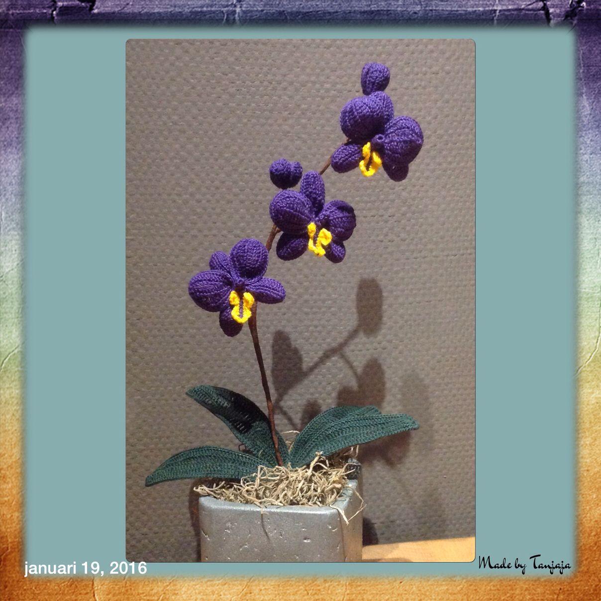 Orchidee Naar Patroon Van Yvonne Blanker Eigen Haakwerkjes