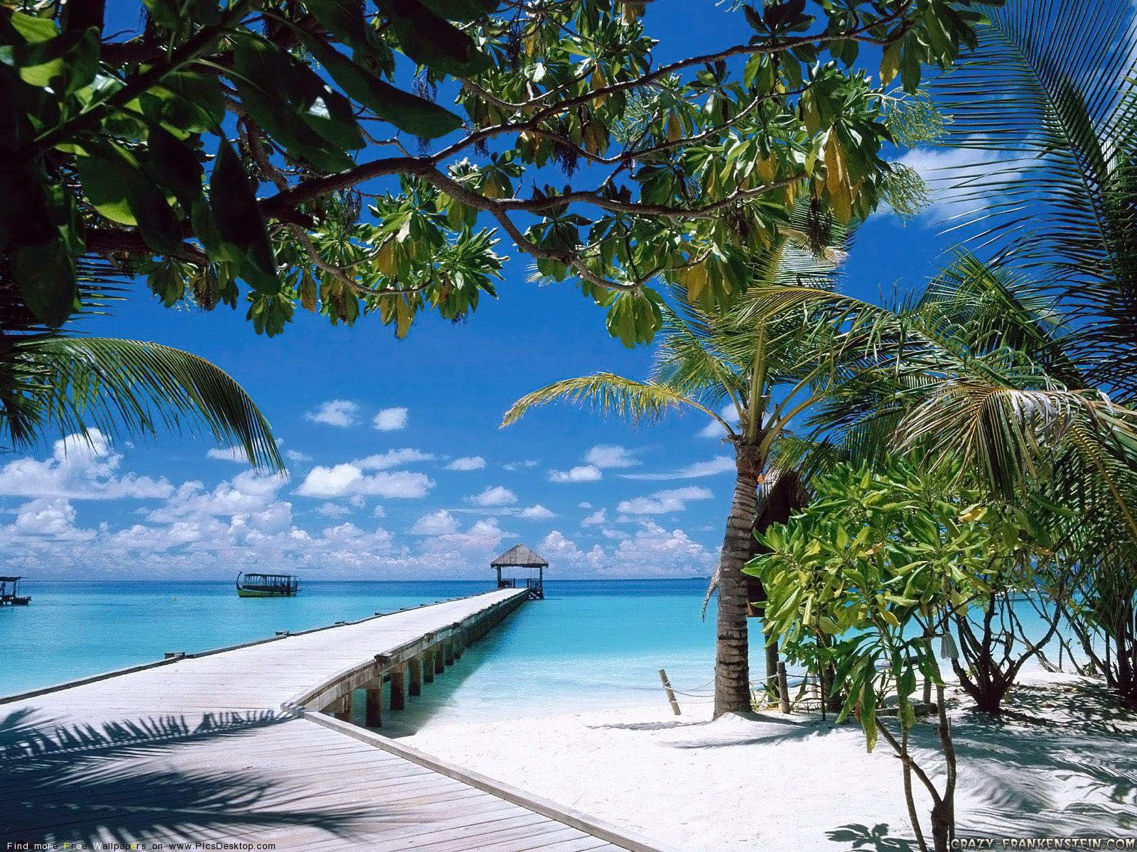 Tropical Beach Beach Background Beach Wallpaper Beach Road Desktop wallpaper beach paradise