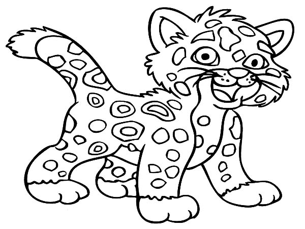 Baby Jaguar Coloring Pages Bulk Color In 2020 Coloring Pictures For Kids Zoo Animal Coloring Pages Free Coloring Pictures