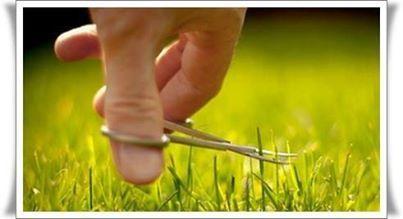 aparar grama