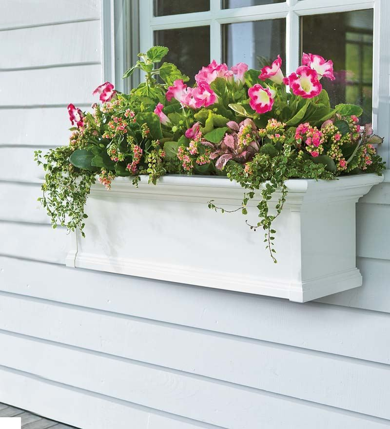 Yorkshire Self-Watering Window Box, 2'L   Collection Accessories