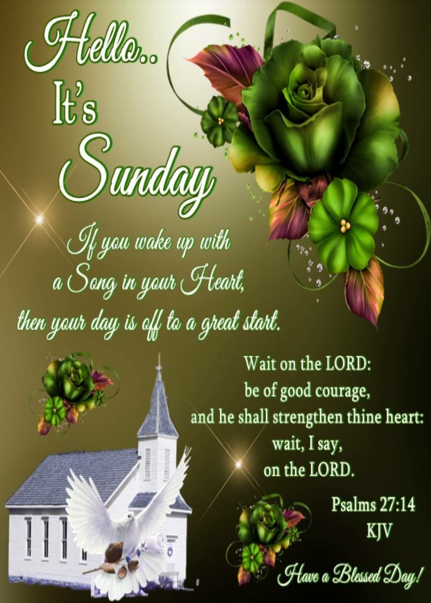 20 Sunday ideas   happy sunday quotes, morning blessings, blessed ...