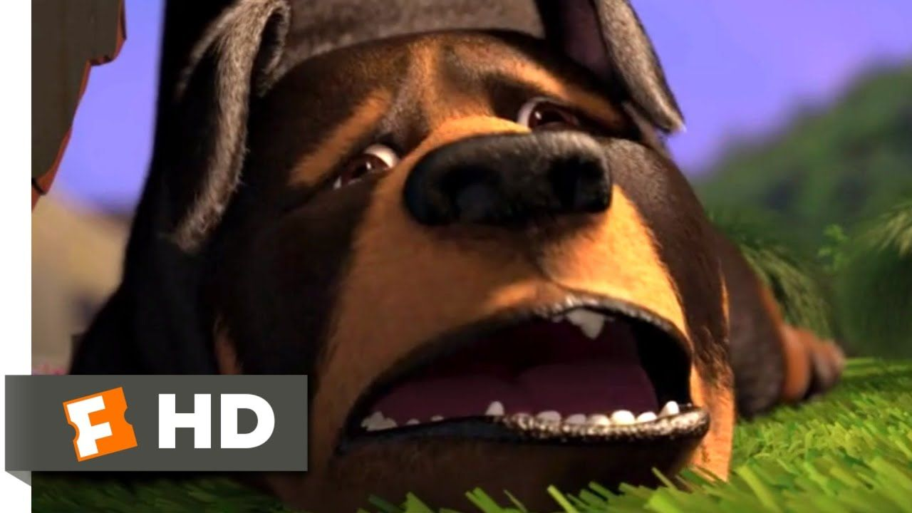 Over The Hedge 2006 Doggie Disaster Scene 5 10 Movieclips Youtube In 2020 Doggy Indie Movies Classic Trailers
