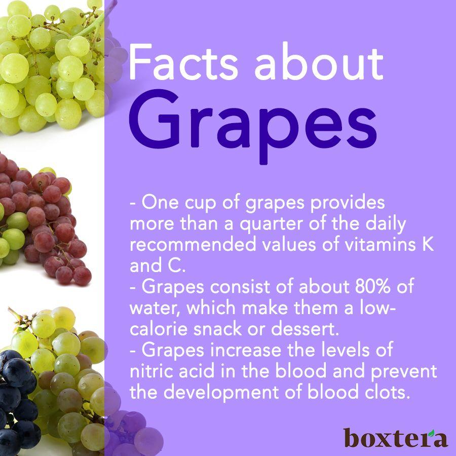 50 Best Grape Benefits Images Grapes Benefits Grapes Healthy
