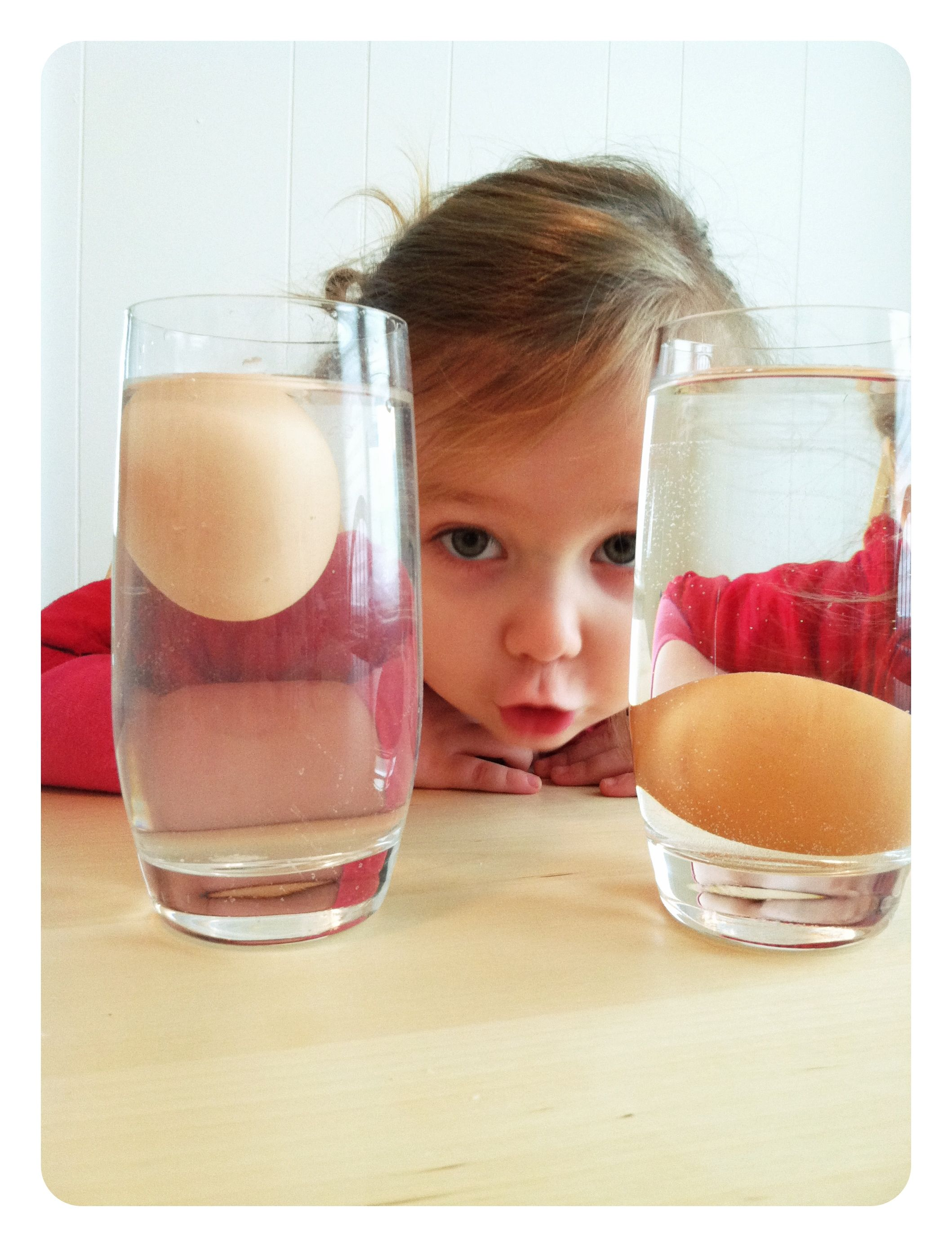 Why Does One Egg Float And The Other Sink They Are Both