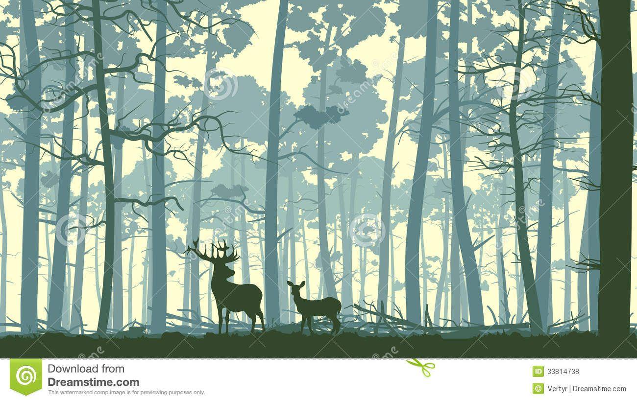 Horizontal Illustration Of Wild Animals In Wood. Stock ...