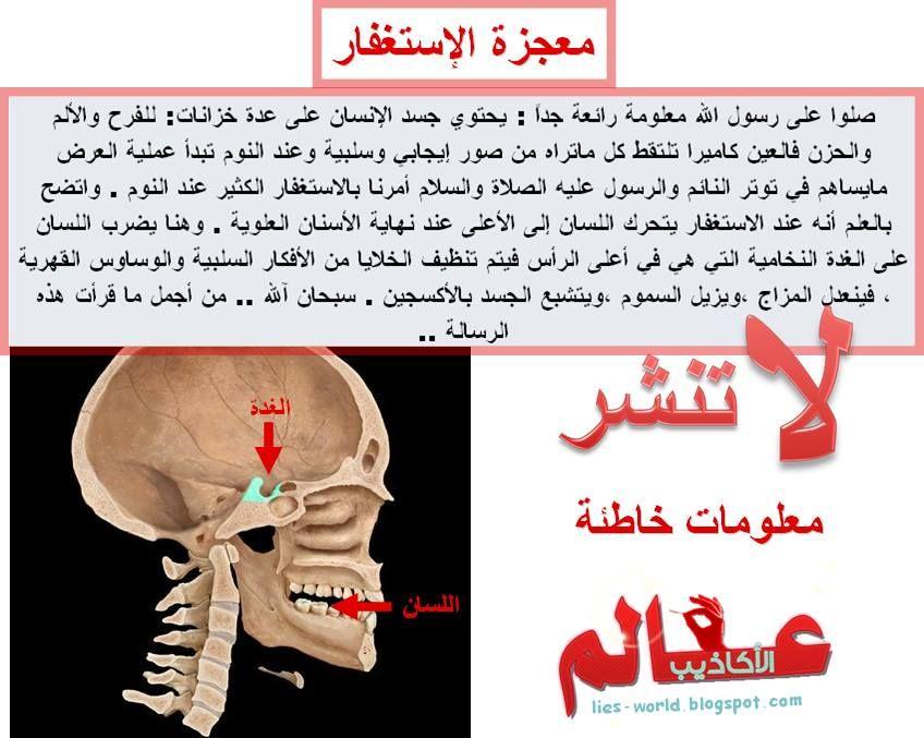 ابليست بالعربية On Twitter Medical Education Pharmacy Medicine Pharmacy Art