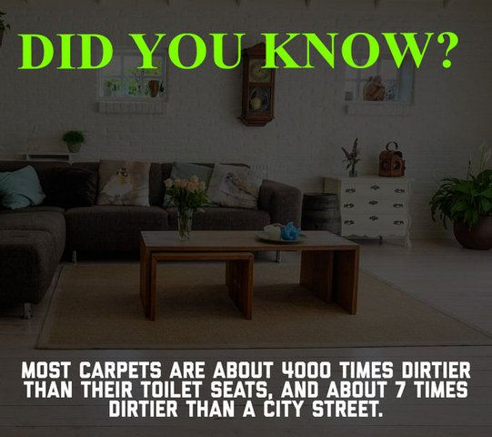 That's the reason carpet cleaning should be done periodically and with professional help. #carpetcleaning #professionalcarpetcleaning #alpinecleaners