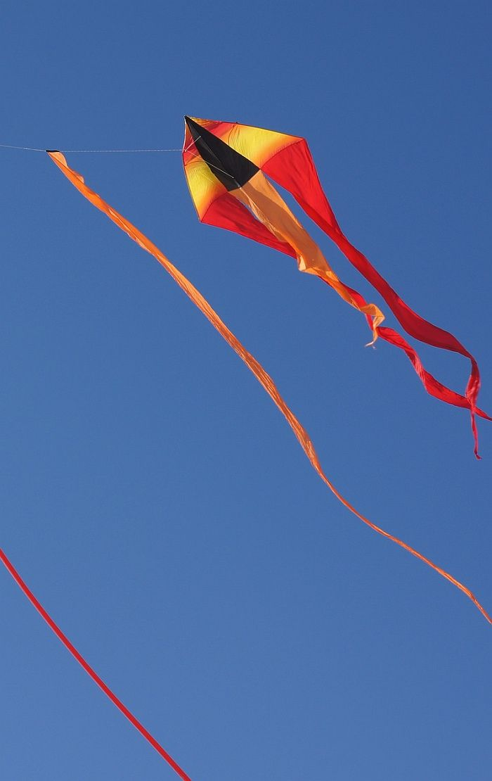 Delta Kite With Red Line Tail With Images Delta Kite Kite